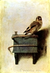 Thistlefinch.