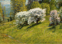 Spring Hillside.
