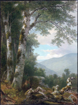 Landscape with Birches.  Durand, A. B. (Asher Brown), 1796-1886  Click to enter image viewer  Use the Save buttons below to save any of the available image sizes to your computer.