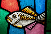 Coventry Cathedral - Fish.