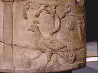 Christ as Peacock on Roman Sarcophagus.   Click to enter image viewer  Use the Save buttons below to save any of the available image sizes to your computer.