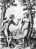 Adam and Eve.  Raimondi, Marcantonio, ca. 1480-ca. 1534  Click to enter image viewer  Use the Save buttons below to save any of the available image sizes to your computer.