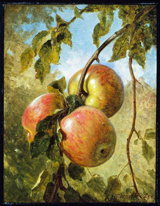 Apples.  Whittredge, Worthington, 1820-1910  Click to enter image viewer  Use the Save buttons below to save any of the available image sizes to your computer.