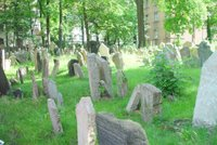 Old Jewish Cemetery.   Click to enter image viewer  Use the Save buttons below to save any of the available image sizes to your computer.