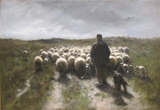 Landscape with Shepherd and Sheep.  Mauve, Anton, 1838-1888  Click to enter image viewer  Use the Save buttons below to save any of the available image sizes to your computer.
